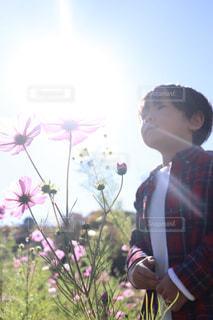 屋外,太陽,朝日,コスモス,光,人物,人,未来,少年,夢,ポジティブ,群馬県,みなかみ町,希望,可能性