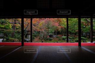 大きな窓の景色 - No.856609