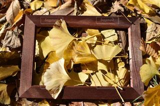 箱いっぱいの家具とテーブルの上の花瓶の写真・画像素材[870083]