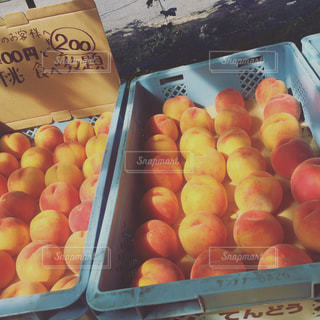 フルーツ,果物,桃,山形,フルーツ狩り,ピーチ