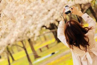 風景,アウトドア,春,カメラ,桜,木,ピンク,晴れ,景色,お花,人,休日,お出かけ,2018年3月