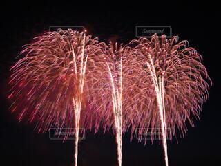 花火の写真・画像素材[4667567]