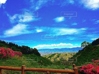空,屋外,景色,新緑,眺め,日中,エリア