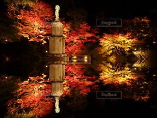 近くの暗闇の中で座っているライトポールの写真・画像素材[858008]