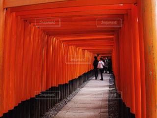 赤いカーテンの写真・画像素材[917494]