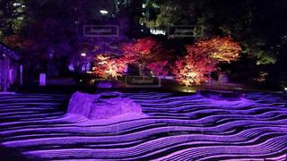 福岡 祇園 イルミネーション ライトアップ 夜景 絶景