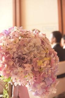 式のお花の写真・画像素材[908908]