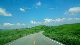緑の続く道への写真・画像素材[966036]