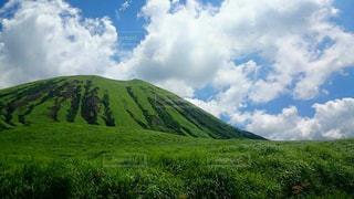 緑の大地と青の空の写真・画像素材[966039]