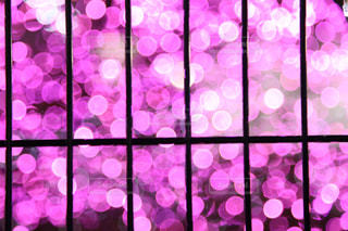 ガラスの陳列ケースの写真・画像素材[866430]