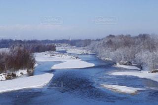 樹氷の写真・画像素材[891692]