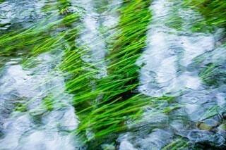 水面の写真・画像素材[3777544]
