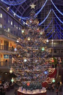 サッポロファクトリー クリスマスツリーの写真・画像素材[880795]