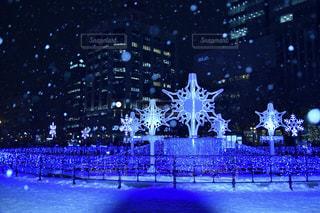 風景,夜,夜景,雪,北海道,イルミネーション,日本,札幌,ホワイトイルミネーション