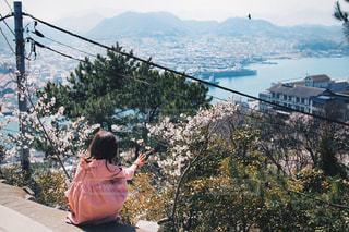 自然,花,カメラ,桜,レトロ,旅行,旅,休日,広島,お昼,一眼レフ,お出かけ