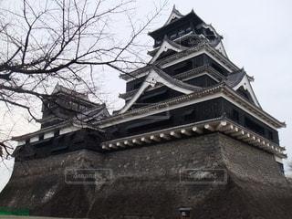 絶景,観光,旅行,熊本城,熊本県,カラス城,熊本市