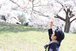 花と男の子 - No.889757