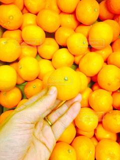 オレンジの山の写真・画像素材[919903]