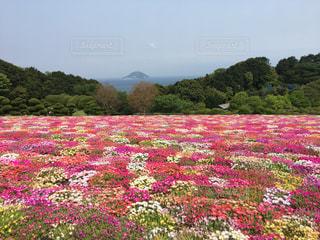 福岡,糸島,能古島