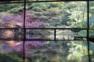 京都 瑠璃光院 紅葉 絶景 反射 綺麗