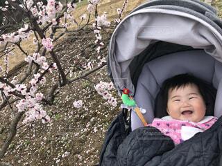満面の笑みと桜の写真・画像素材[4273570]