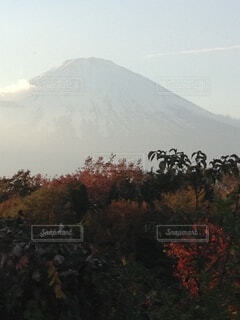 紅葉 富士山シルエットの写真・画像素材[3731310]