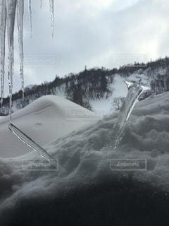 雪に刺さる氷柱 - No.880794
