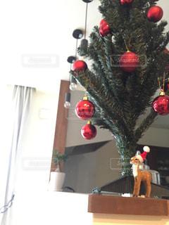 冬,赤,クリスマス,ツリー,トナカイ