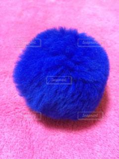 青と赤の帽子の写真・画像素材[895618]