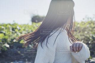 hairの写真・画像素材[1585496]