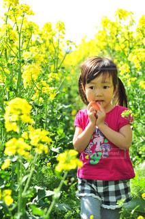 黄色の花の前で立っている女の子の写真・画像素材[878506]