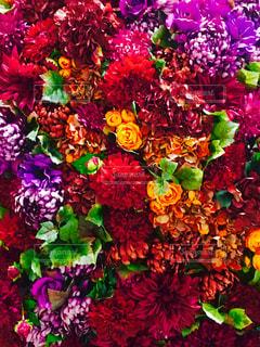自然,花束,カラフル,多色