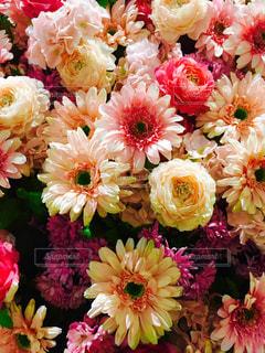 花束の写真・画像素材[1369754]