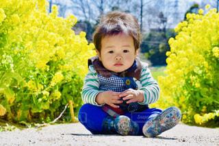 子ども,春,お花畑,屋外,お花見,ピクニック,人物,人,赤ちゃん,男の子,菜の花畑,1歳,春の訪れ,愛知牧場