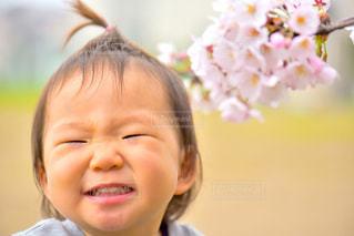 桜,子供,女の子,笑顔,こども,微笑み,ちょんまげ