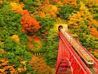 バック グラウンドで大きな赤い橋の写真・画像素材[869334]