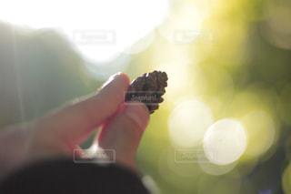 手ぼかしの写真・画像素材[877634]