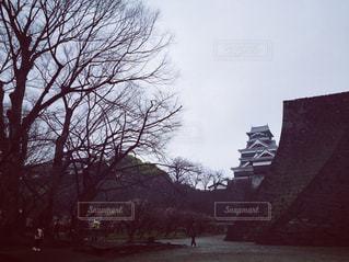 景色,冬枯れ,熊本,熊本城,遠景,梅林,城壁,地震前