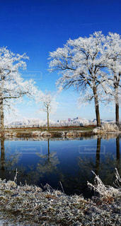素敵な場所、美しい場所、綺麗な風景