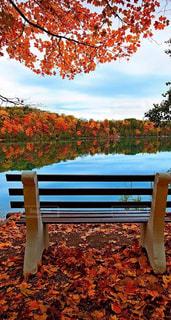 美しい,綺麗な場所、素敵な場所、美しい風景