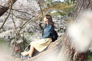 春,桜,木,ポートレート,Nikon,Spring,春服