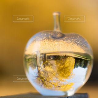ガラスの中の秋色世界の写真・画像素材[874386]