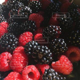 庭,赤,フルーツ,ベリー,新鮮