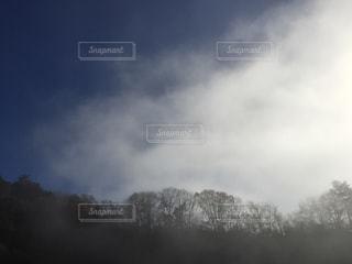 霧立ち上るの写真・画像素材[910758]