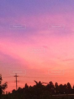 風景,空,夕日,屋外,ピンク,雲,夕焼け,夕暮れ,オレンジ,樹木,電線,夕陽