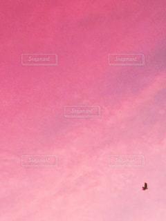 空,ピンク,雲,夕焼け,夕方,pink,カラス