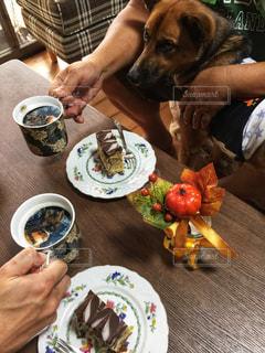 犬と食べ物の皿とテーブルに座って人の写真・画像素材[1480471]