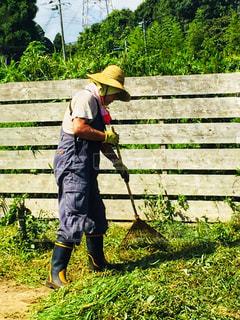 庭掃除の写真・画像素材[1488642]