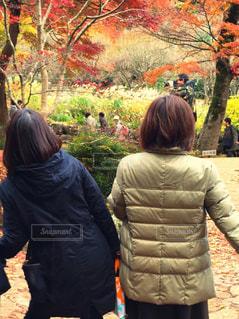 木の隣に立っている人のグループの写真・画像素材[1617305]