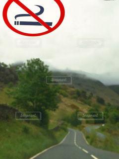 車,道路,イギリス,ドライブ,禁煙,ステッカー,レンタカー,湖水地方,フロントガラス,ケスウィック
